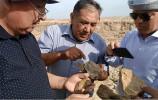 Сотрудничество предпринимателей Европы и учёных Узбекистана в пустыне Кызылкум