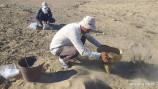 Jonkeldida yangi arxeologik yodgorliklar topildi